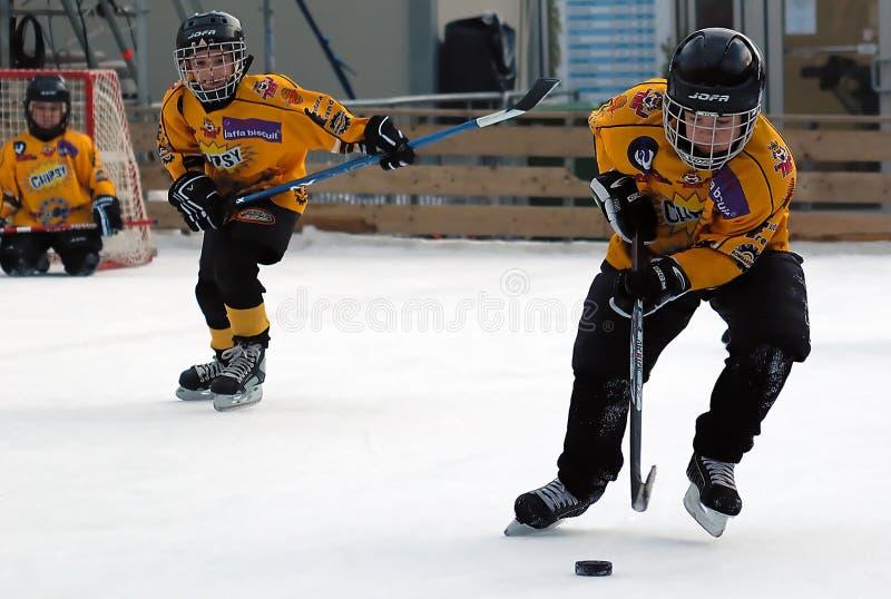Jugador del hockey sobre hielo dos en la acción fotografía de archivo libre de regalías