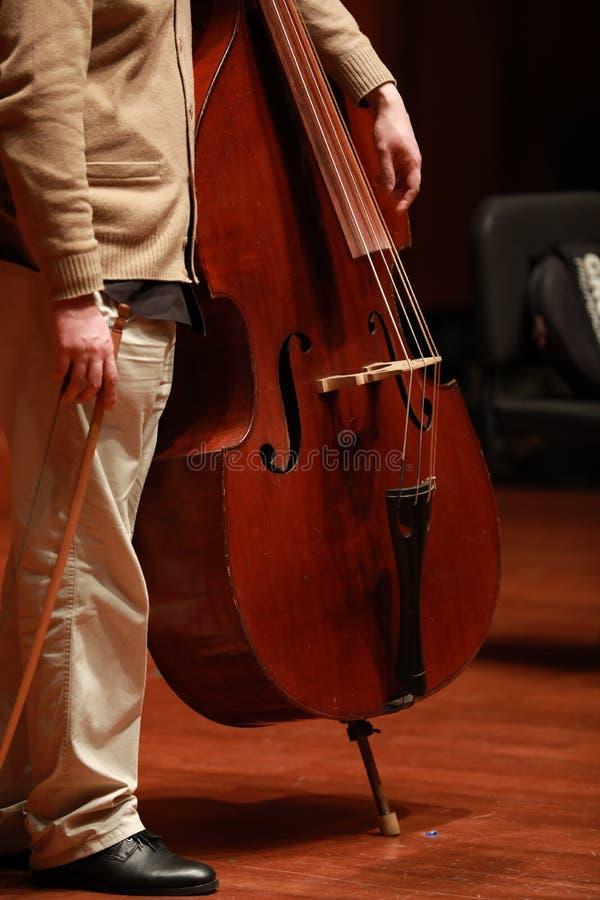 Jugador del violoncelo Compositor, música imágenes de archivo libres de regalías