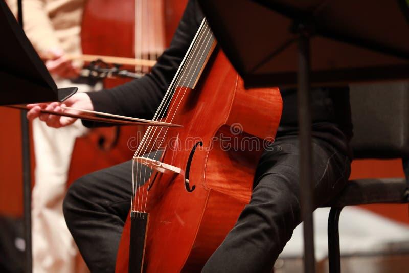 Jugador del violoncelo Compositor, música Retrato del violoncelista que juega música clásica en el violoncelo en fondo negro Copy fotos de archivo