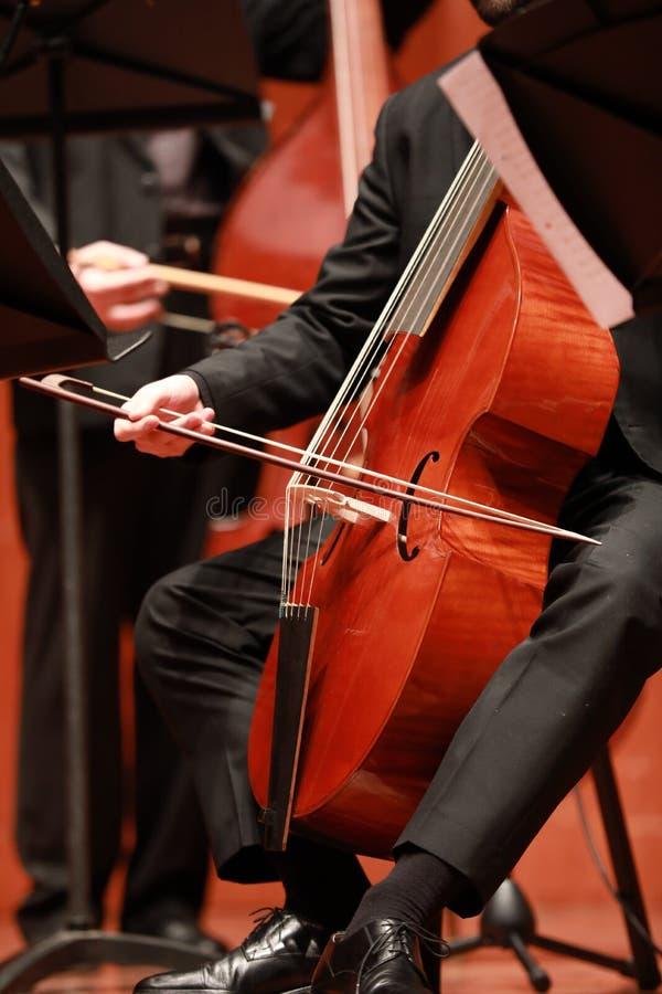 Jugador del violoncelo Compositor, música Retrato del violoncelista que juega música clásica en el violoncelo en fondo negro Copy foto de archivo libre de regalías