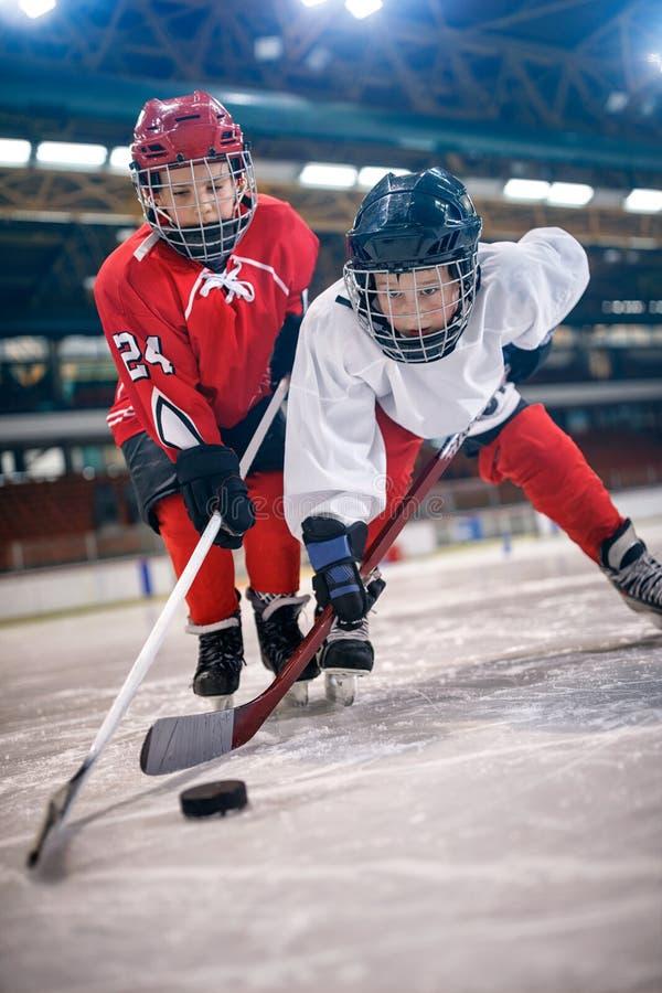 Jugadores de los muchachos del deporte del hockey sobre hielo imagen de archivo
