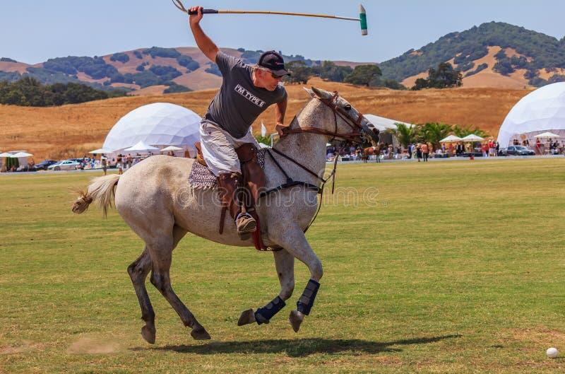 Jugadores de polo que montan a caballo conseguir listo para golpear la bola de polo en la velocidad imágenes de archivo libres de regalías