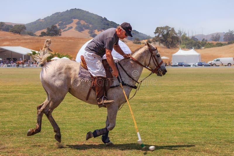 Jugadores de polo que montan a caballo conseguir listo para golpear la bola de polo en la velocidad foto de archivo