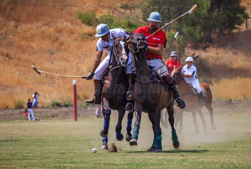 Jugadores de polo que montan a caballo después de la bola de polo en la velocidad imágenes de archivo libres de regalías