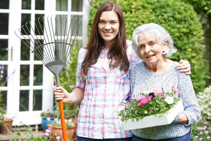 Jugendenkelin-helfende Großmutter im Garten stockbilder