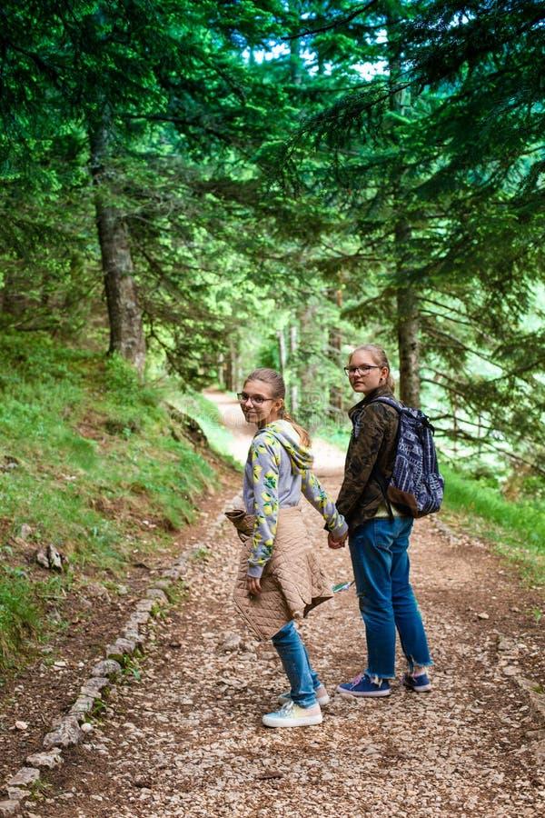 Jugendliche mit den Rucksäcken, die in den Waldsommerferien wandern lizenzfreies stockfoto