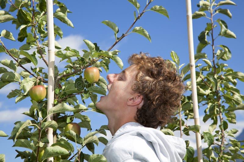 Jugendlicher, der in einen Apfel beißt lizenzfreies stockfoto
