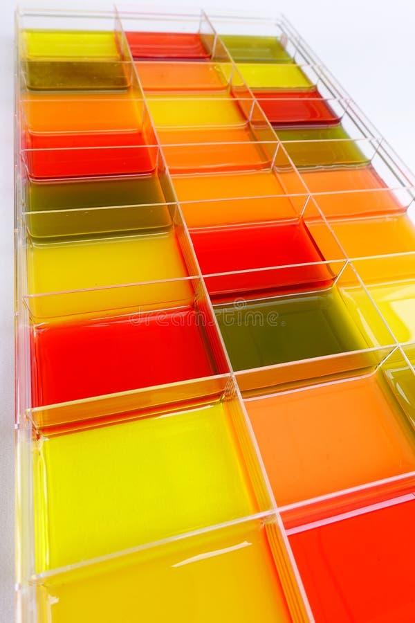 Jugo fresco de la fruta y verdura aislada en caja fotografía de archivo libre de regalías