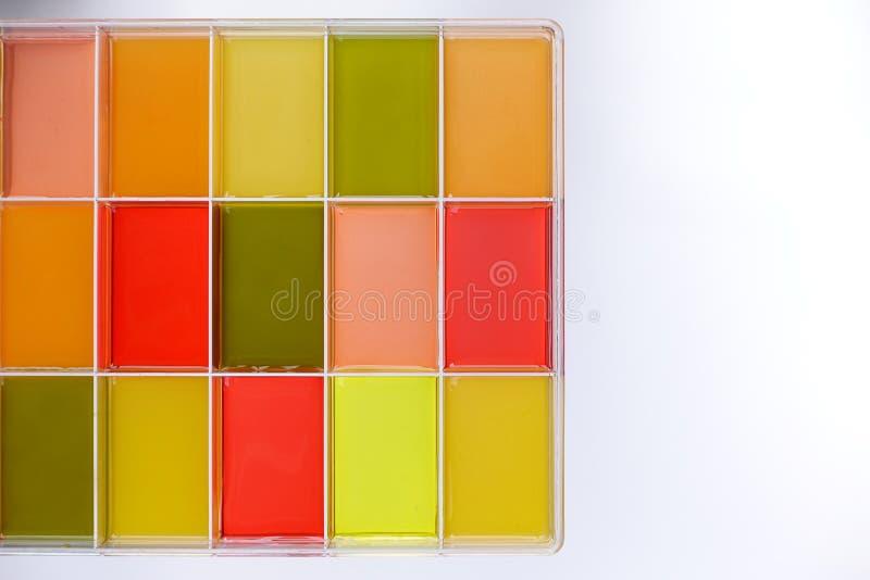 Jugo fresco de la fruta y verdura aislada en caja fotos de archivo libres de regalías