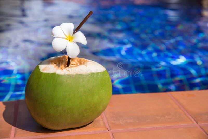 Jugo fresco del coco con la paja y el plumeria, flor o del frangipani foto de archivo