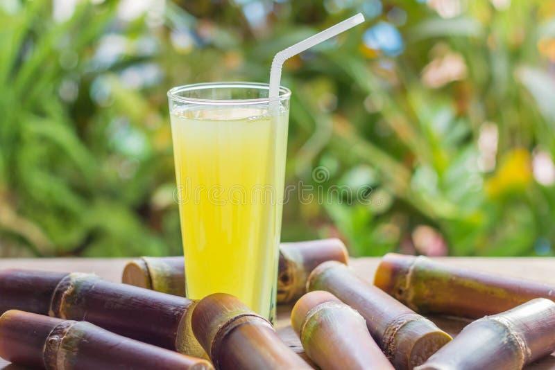 Jugo fresco para una dieta del detox - frutas orgánicas de la caña de azúcar en woode imágenes de archivo libres de regalías