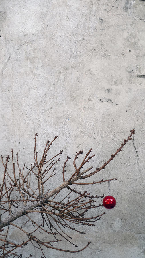 Juguete de la Navidad en una rama de árbol seca de abeto fotografía de archivo