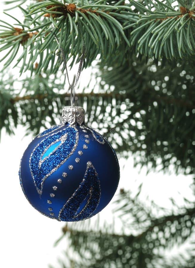 Juguete De La Navidad En Una Ramificación De Un Piel-árbol Fotos de archivo libres de regalías