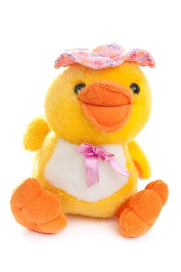 Juguete del pato imágenes de archivo libres de regalías
