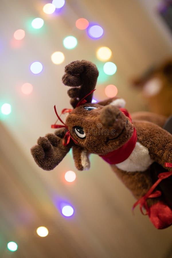 Juguete del reno de la Navidad con las luces imagenes de archivo