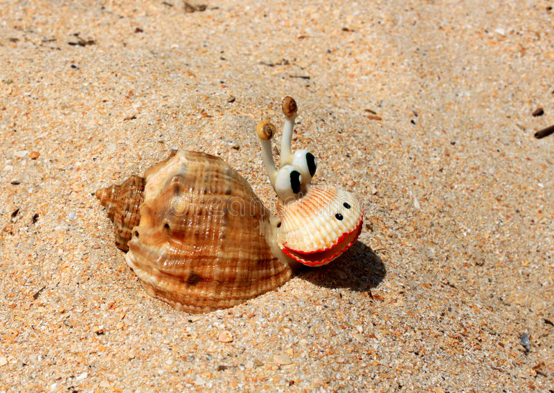 Juguete del Seashell fotografía de archivo libre de regalías