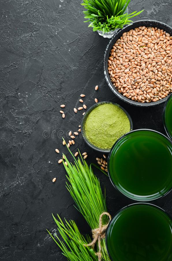 The juice from the green sprouted wheat, and wheat grains. On a black background. Micro Green. Healthy food. Top view. Free space for your text royalty free stock photography