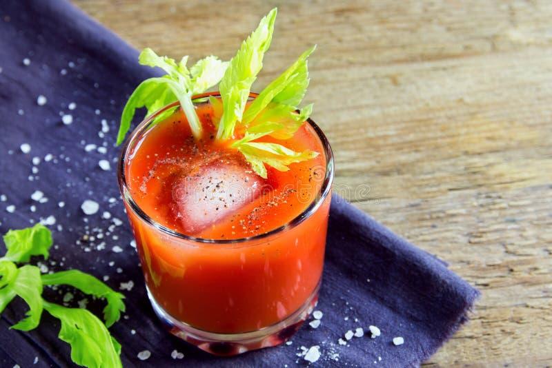 juice tomato arkivfoto