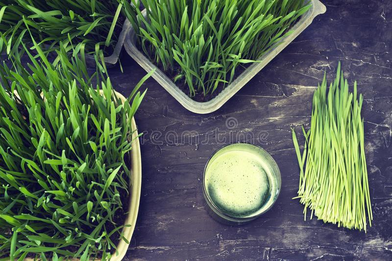 Juice from wheat grass. Freshly squeezed juice from wheat grass stock image