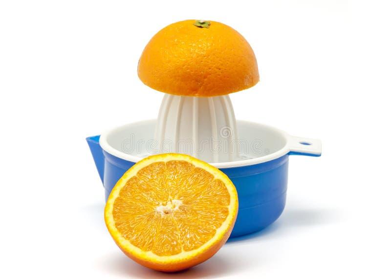 Juicer avec des oranges image libre de droits