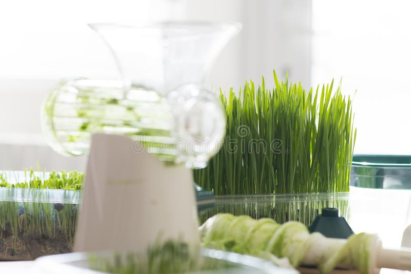Juicer manual de los wheatgrass y wheatgrass frescos para el detox o la dieta sana imagenes de archivo