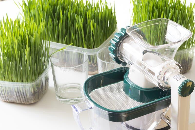 Juicer manual de los wheatgrass y wheatgrass frescos para el detox o la dieta sana fotografía de archivo libre de regalías