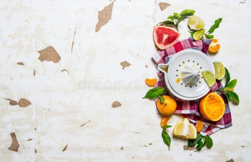 Juicer med citrusfrukter - grapefrukt, apelsin, tangerin, citron, limefrukt på tyget arkivbilder