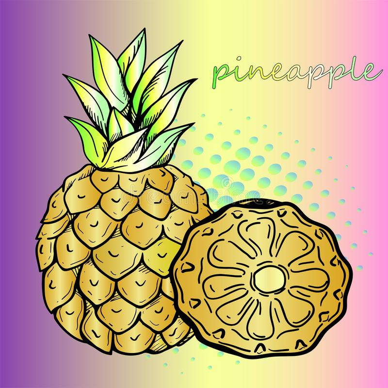 Juicy και γλυκός ανανάς και ένα κομμάτι του ανανά ελεύθερη απεικόνιση δικαιώματος
