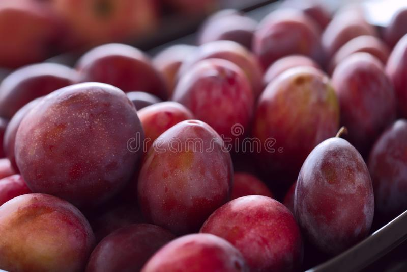 juicy κόκκινο δαμάσκηνων Υπόβαθρο Καλλιεργημένο στιγμιότυπο στοκ φωτογραφία με δικαίωμα ελεύθερης χρήσης