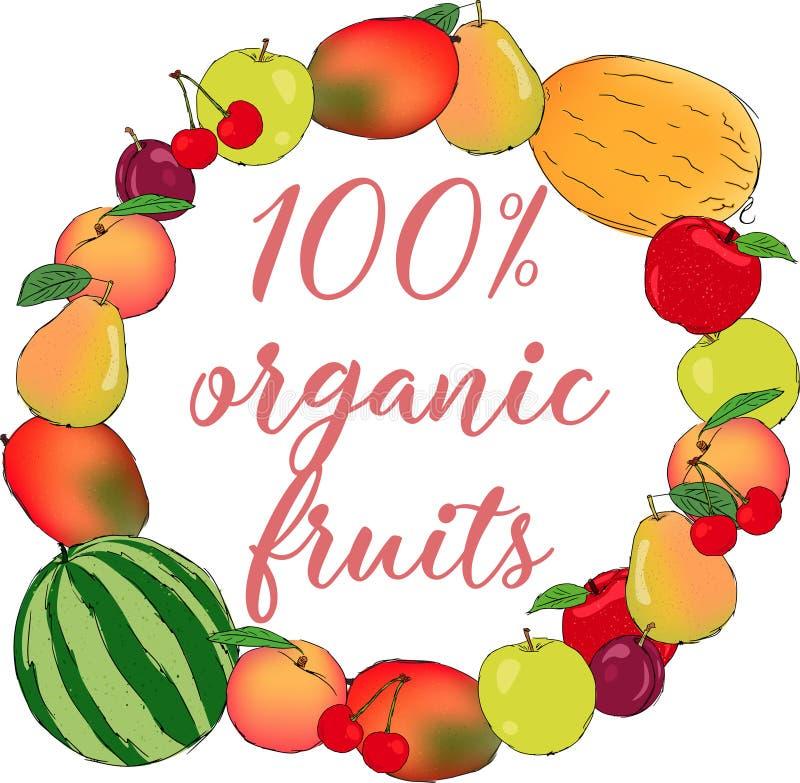 Juicy οργανικό διανυσματικό πλαίσιο φρούτων απεικόνιση αποθεμάτων