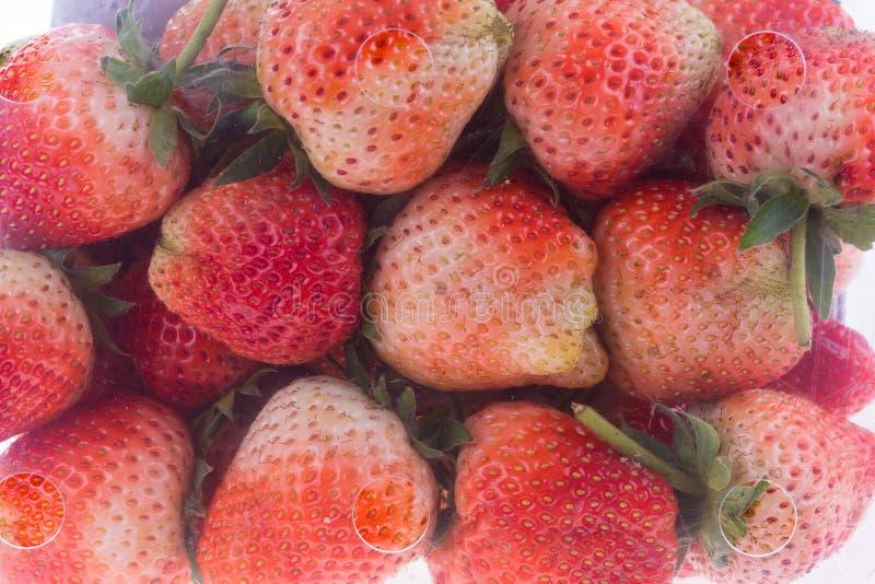 Juicy φρούτα φραουλών στο πλαστικό κιβώτιο στοκ φωτογραφίες