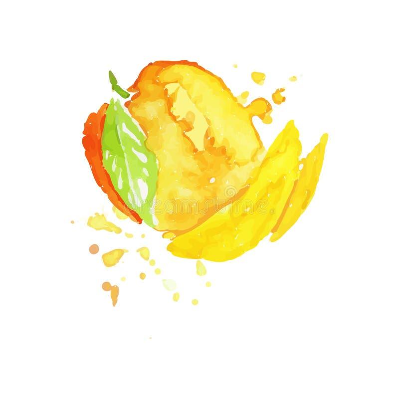 Juicy ώριμο χέρι watercolor φρούτων μάγκο που χρωματίζει τη διανυσματική απεικόνιση διανυσματική απεικόνιση