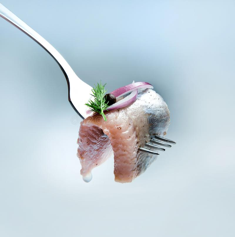 A juicy and appetizing piece of herring on a fork, decorated with red onions, sweet peas and a sprig of dill. royalty free stock image