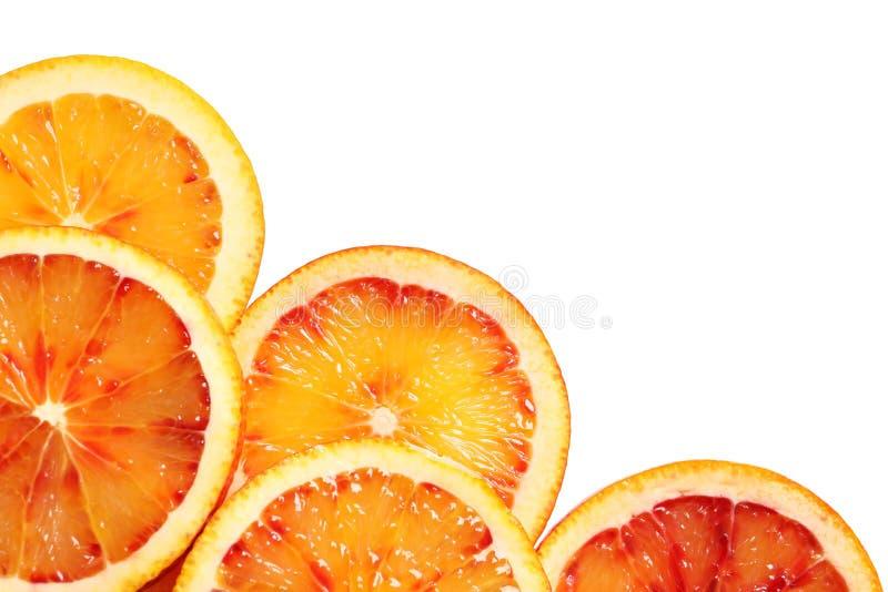 Juicy blood orange slices on white background. Citrus fruit. Juicy blood orange slices on white background, top view. Citrus fruit royalty free stock photo