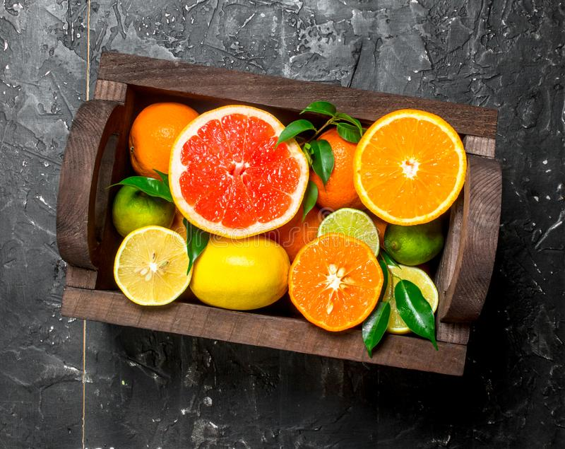 Juicy citrus in a wooden box. On black rustic background royalty free stock image