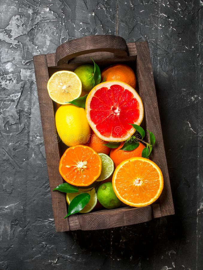 Juicy citrus in a wooden box. On black rustic background royalty free stock images