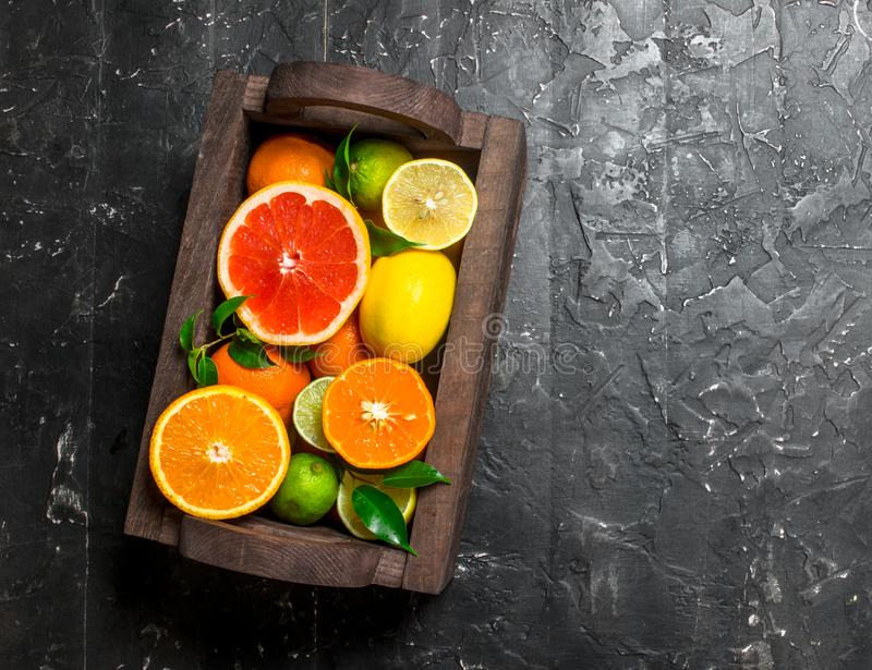 Juicy citrus in a wooden box. On black rustic background stock photography