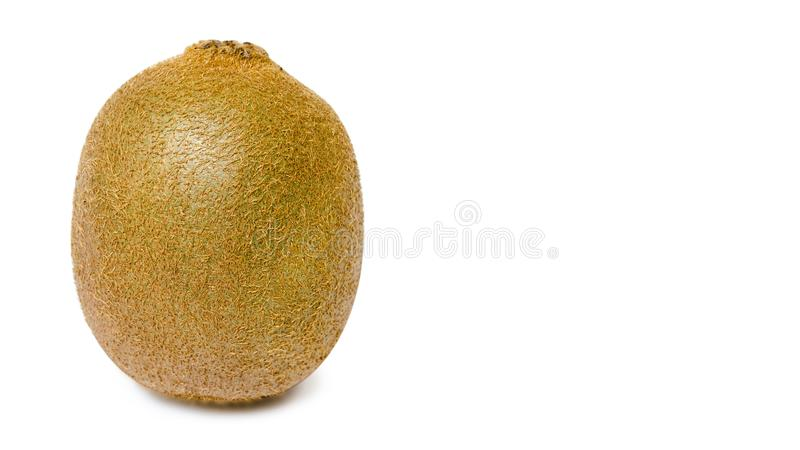 juicy delicious and healthy ripe kiwi, isolated on white background. copy space, template. royalty free stock photos