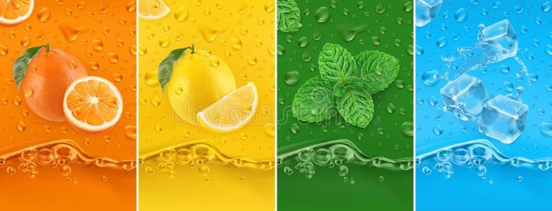 Juicy and fresh fruit. Orange, Lemon, mint, ice water. Dew drops and splash. 3d vector set. High quality 50Mb eps. Juicy and fresh fruit. Orange, Lemon, mint vector illustration