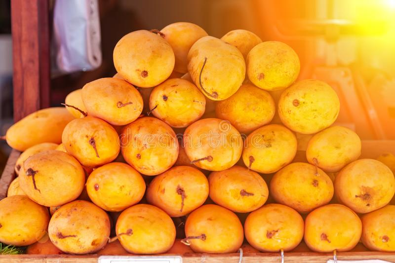 Juicy fresh yellow mango on the counter of the street market on a sunny day stock photography