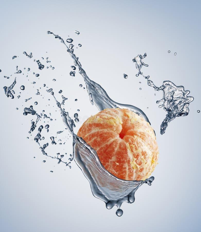 Download Juicy fruit stock photo. Image of mandarin, splashing - 16726346