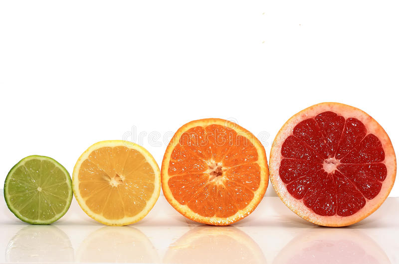 Juicy fruit background from various slices of citrus. Bright juicy fruit background from various slices of citrus royalty free stock photos