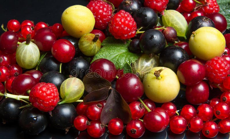 Juicy fruits and berries. Summer juicy fruits and berries stock image