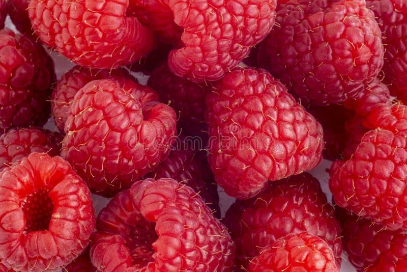 Juicy garden raspberry background stock images