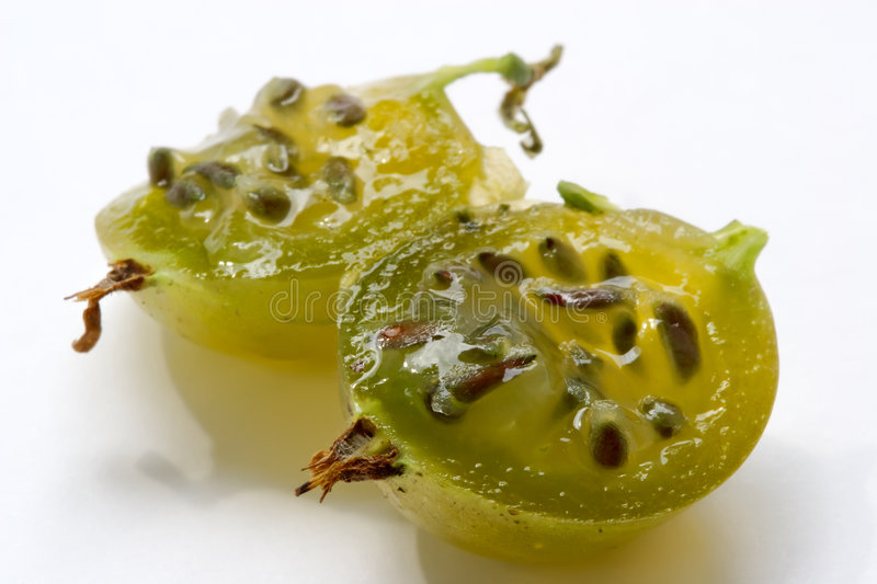 Juicy gooseberry. Juicy berries of a gooseberry are shone on the sun stock photo