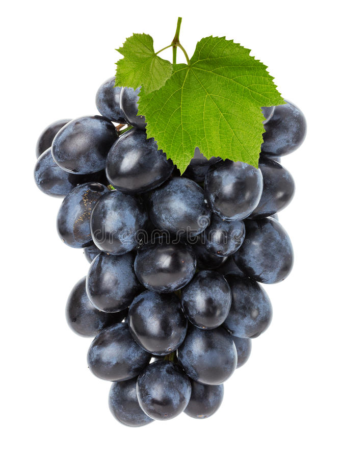 Juicy grapes isolated on the white background stock images