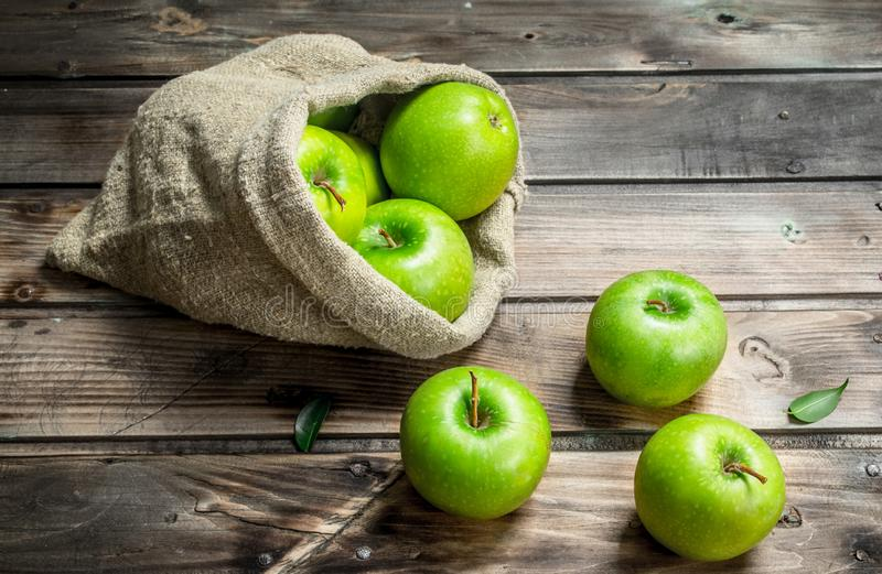 Juicy green apples in an old bag. On grey wooden background stock images