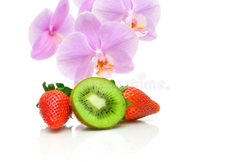 Juicy kiw, strawberries and orchid flowers on a white background stock images