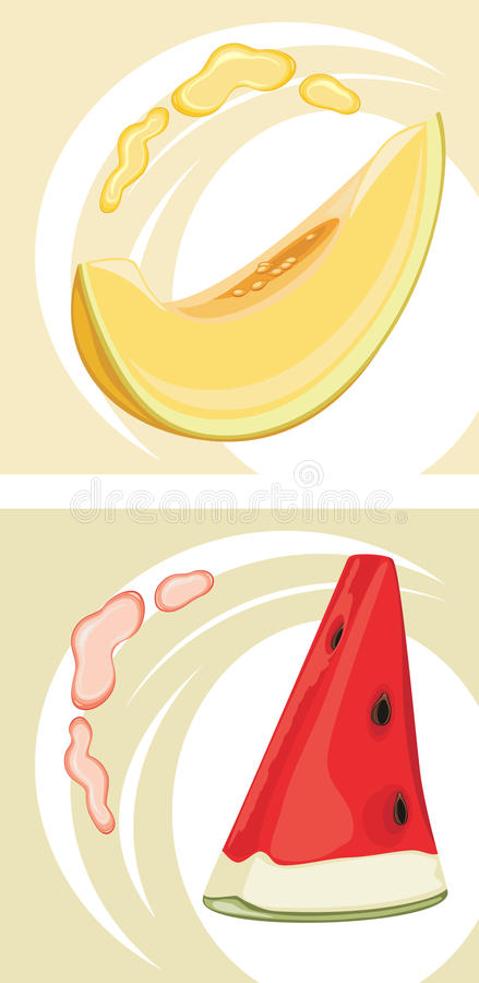 Juicy melon and watermelon. Labels for design royalty free stock image