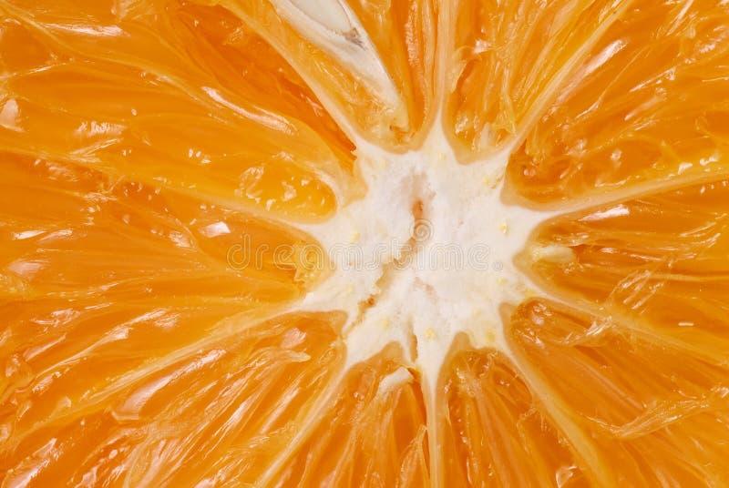 Download Juicy orange stock photo. Image of natural, beautiful - 15952586